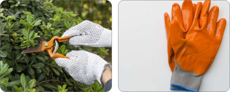 GLOVES THAT ARE CUT RESISTANT